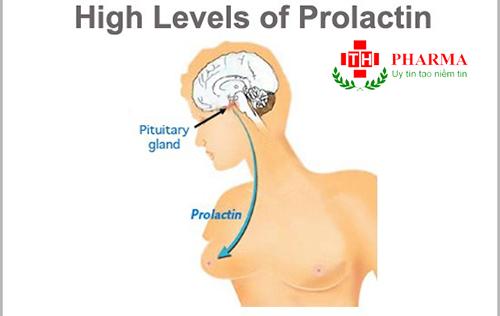 Thuốc Dostinex 0.5mg Cabergoline Điều trị Prolactin máu cao