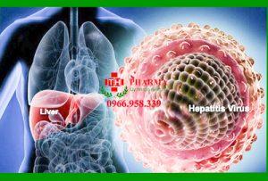 Viêm gan B sống được bao lâu; Viêm gan B mạn tính có nguy hiểm không, có lây không, sống được bao lâu ngoài môi trường, Triệu chứng viêm gan B mạn