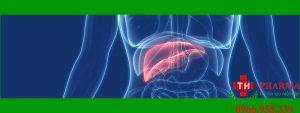 Những điều cần biết về bệnh viêm gan siêu vi?